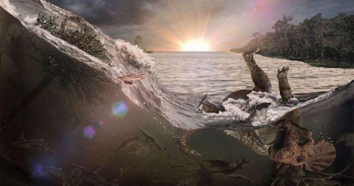 Chicxulub: el extraordinario hallazgo que revela lo que probablemente ocurrió unas horas después de que cayera el gigantesco asteroide que cambió la historia de nuestro planeta