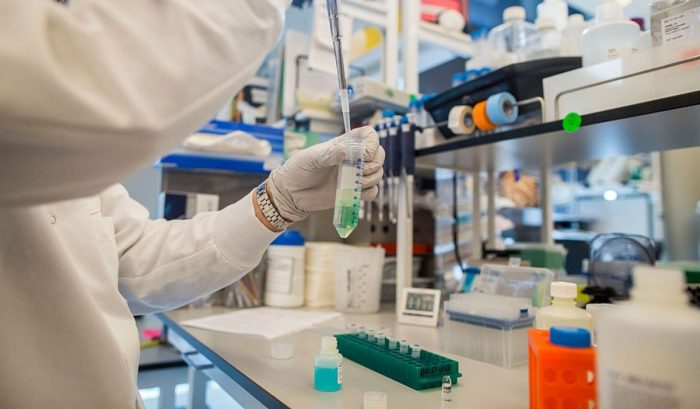 Optimismo por resultados de medicamento para el hígado graso