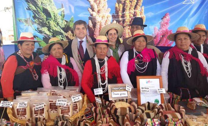 Congreso Mundial de la Quínua reunirá en Chile a expertos para analizar el futuro de este grano ancestral