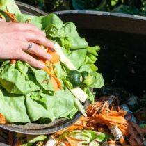 Desperdicio de alimentos descontrola emisiones contaminantes en Norteamérica