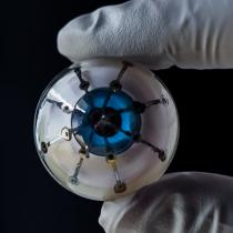 Neurocientíficos dejan atrás la ciencia ficción y crean el primer ojo biónico con impresión 3D