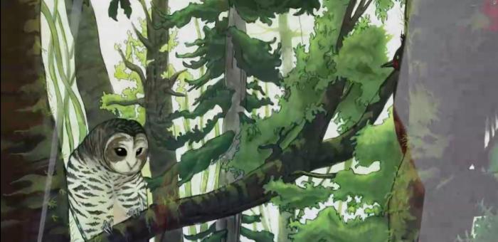 """""""El Bosque Chileno"""": libro ilustrado basado en el amor que sentía Pablo Neruda por la naturaleza"""