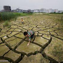 """Día Mundial del Clima: """"Enfrentamos el desafío más importante en la historia de la humanidad"""""""
