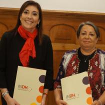 """Directora del INDH suma críticas al Gobierno por control de identidad: """"Ya existe y es arbitrario"""""""