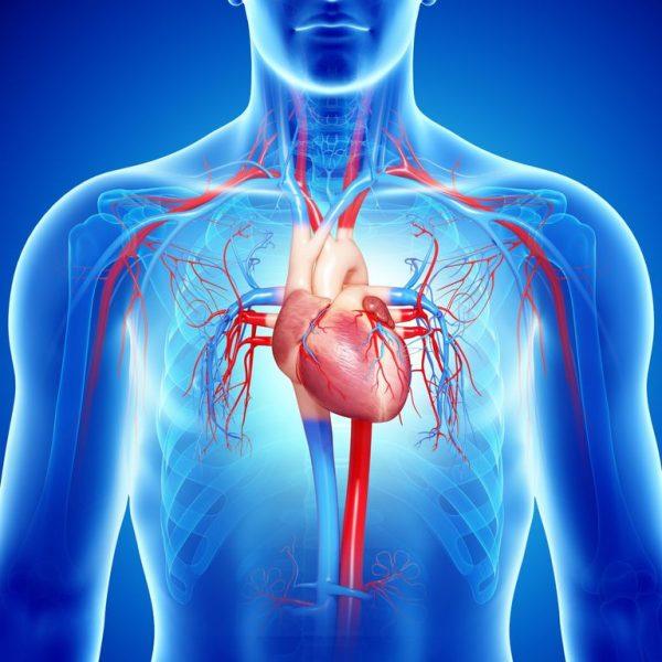 Piden que tratamiento para personas con insuficiencia cardiaca sea incluida en el GES