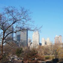 La guía de Nueva York
