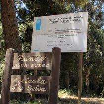 Parque eólico alemán en la Araucanía: ¿beneficiará a los mapuche?