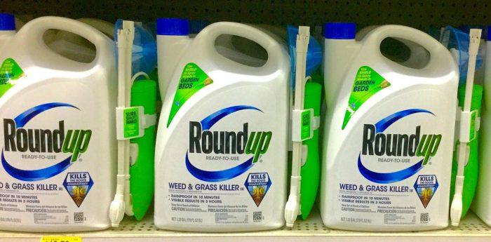 Monsanto condenado a pagar US$ 81 millones por efectos cancerígenos de herbicida