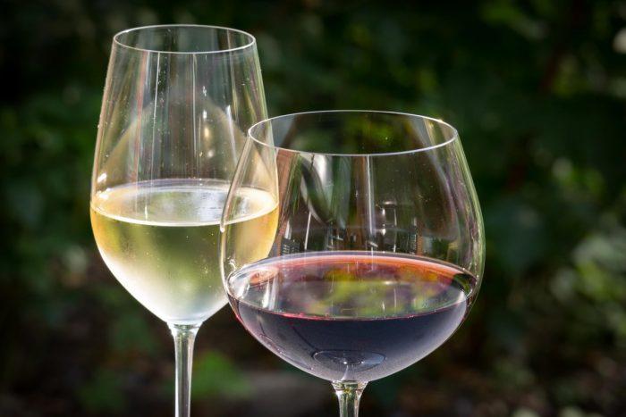 Vinos chilenos se destacan entre los 100 mejores vinos del mundo 2019