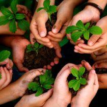 Se necesitan 31 años para un mundo sustentable