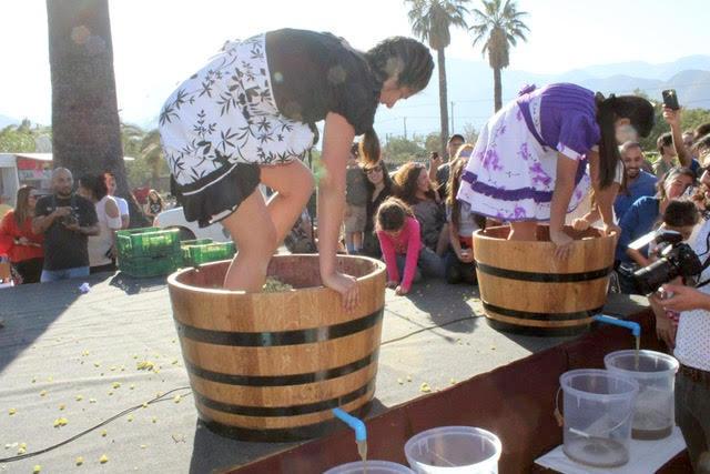 Vendimia de Aconcagua concentrará los mejores vinos del valle y coincidirá con el regreso del Tren del Recuerdo desde Santiago