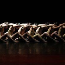 No sólo en Santiago: las otras actividades para celebrar el Día de la Danza