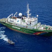 Greenpeace irá de polo a polo por la protección de los océanos