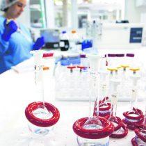 Cáncer cervicouterino: nuevo test que detecta virus papiloma estará disponible en consultorios de manera gratuita