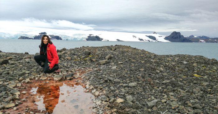 Investigadores estudian diversidad microbiana de suelos antárticos