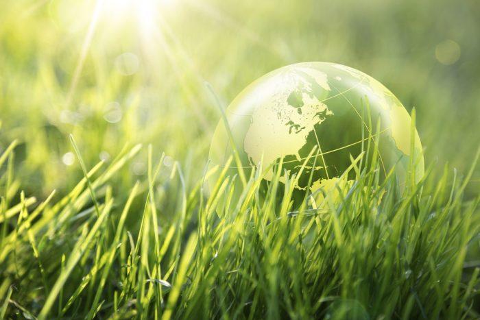 """Nueva etiqueta de """"circularidad"""" busca identificar productos reciclables"""