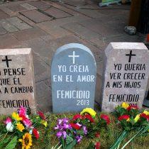 Directora del Sernameg admitió error en cifras de femicidios frustrados