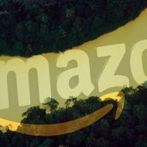 Por qué 8 países sudamericanos están luchando contra Amazon por un nombre