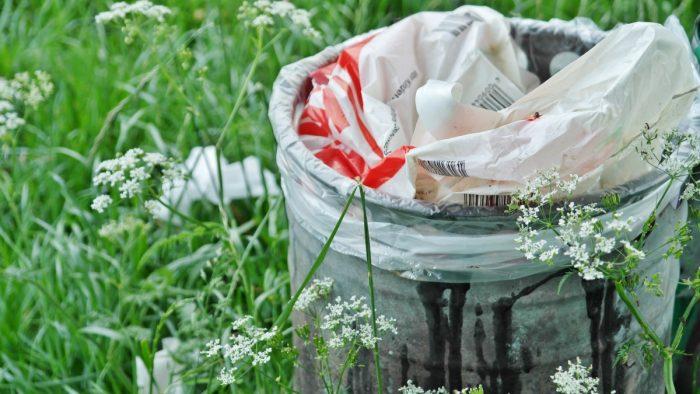 Más allá del reciclaje: iniciativa busca que se declare el 2 de junio como el Día Nacional Sin Basura