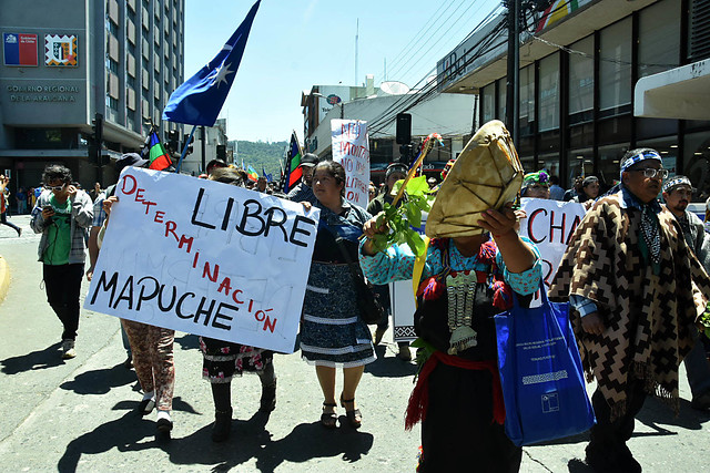 Corte de Temuco acogió amparo por protocolos de Carabineros tras marcha mapuche