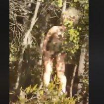 """""""¿Qué clase de hueón desviado viene a nuestros cerros?"""": encuentran extrañas muñecas con perforaciones y mordidas en Quilpué"""