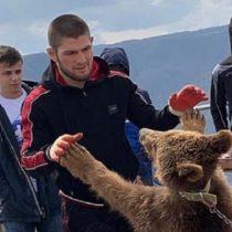Indignación por registro de luchador de la UFC golpeando a un osezno en Rusia