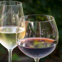 Chile país de diversidad vinícola