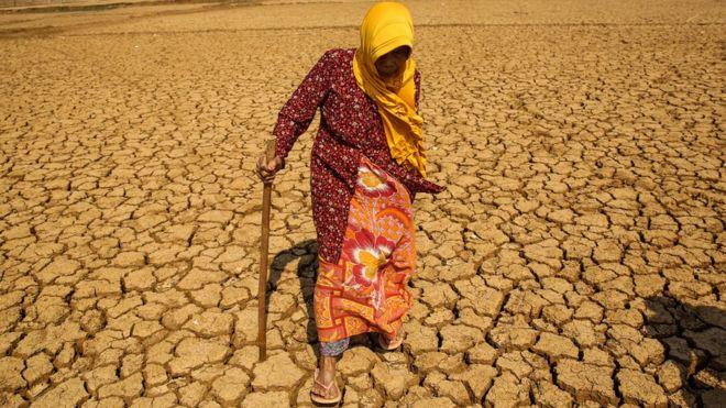 Cambio climático: volver a congelar los polos y otras ideas radicales para salvar el planeta