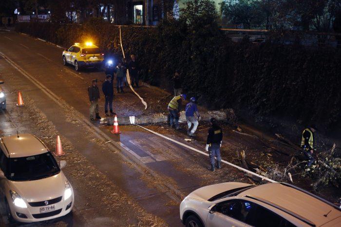 Temporal de lluvia y viento: Enel informa que hay más de 11 mil clientes sin luz en Santiago
