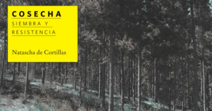 """Exposición """"Cosecha: siembra y resistencia"""" de Natascha de Cortillas en Galería Gabriela Mistral"""