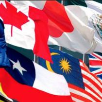 Senado y TTP11 o cómo no discutir un tratado