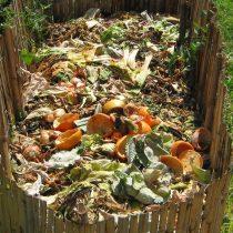 El plan del Ministerio de Medio Ambiente para fomentar el compost en Chile