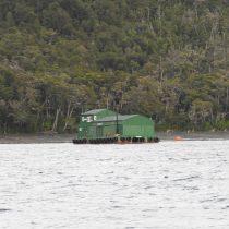 """Greenpeace e instalación de salmonera Nova Austral: """"Es una toma ilegal de mar y el Estado los debe desalojar"""""""