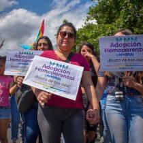 """Adopción homoparental: Gobierno sufre traspié en la Cámara de Diputados y fracasa con su reposición del rol del """"padre y madre"""""""