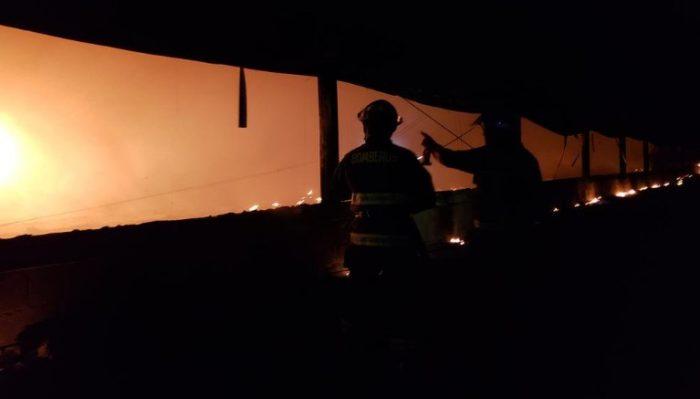 Miles de pollos mueren tras voraz incendio en galpón de Ariztia en San Antonio