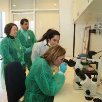 A la vanguardia de la nanoseguridad: inauguran primer laboratorio que detecta la peligrosidad de las nanopartículas
