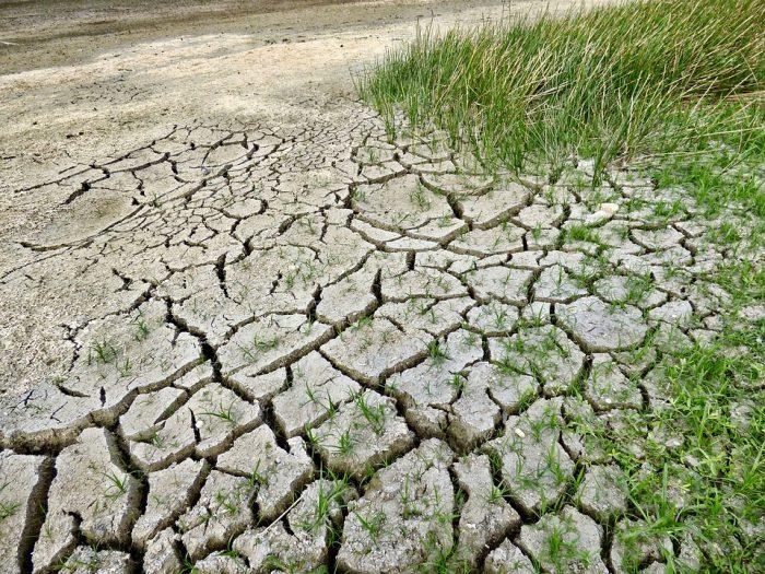 Universidades chilenas se comprometen contra el cambio climático y firman convenio de colaboración