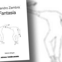 La fantasía amorosa de Alejandro Zambra