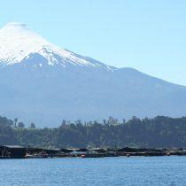 Llaman a terminar definivamente con la salmonicultura en los lagos del sur de Chile