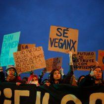 Cientos de personas asistieron a la segunda marcha Fridays for Future contra el cambio climático en Santiago