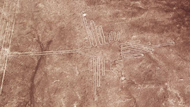 La sorprendente identidad de las misteriosas aves gigantes en las líneas de Nasca en Perú