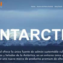 Salmon Leaks: las adulteraciones de salmonera noruega Nova Austral en las prístinas aguas de la Patagonia chilena