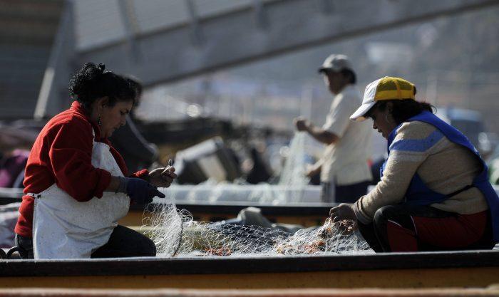Cuota de género: mujeres de la pesca artesanal se empoderan con proyecto de ley