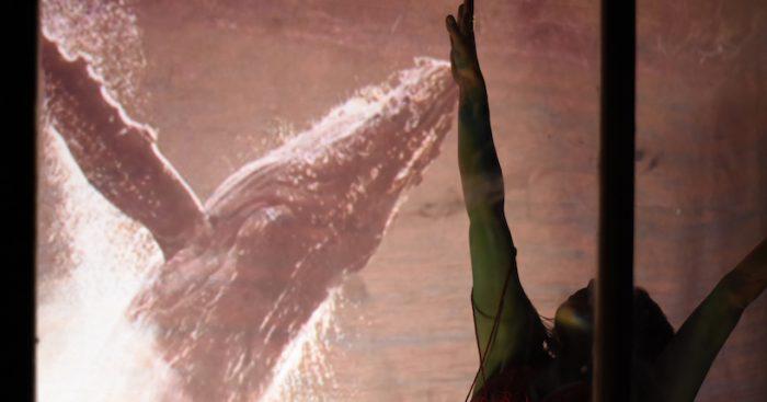 Radicante: La historia del barco tripulado por artistas que navega por el Estrecho de Magallanes