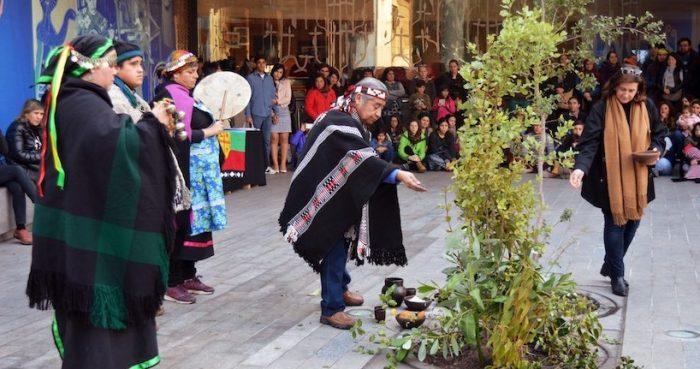 We Tripantu: Año Nuevo Mapuche en Museo Violeta Parra