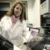Científicos UdeC descubren mecanismo clave para combatir células cancerígenas