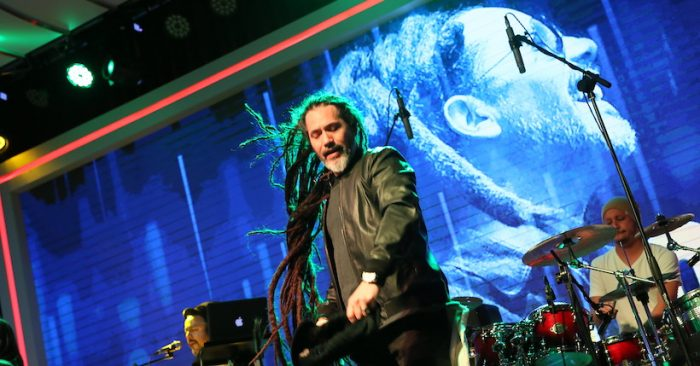 Cumbre reggae latinoamericano en «Vibration Festival» en Teatro Caupolicán