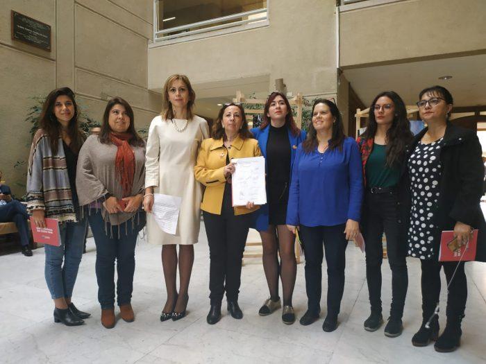 Diputadas de oposición presentaron requerimiento a la Comisión de Ética contra diputado Barros (UDI)