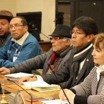 Diputados Velásquez y Hernando piden suspender la consulta indígena realizada por el Gobierno