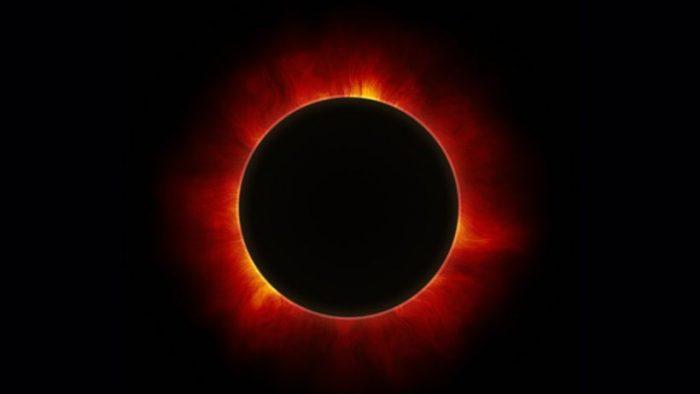 Neurociencia: científicos investigan efectos biológicos en los ecosistemas durante los eclipses
